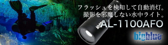 bigblue AF-1100AFO 新発売!カメラのフラッシュに反応して消灯する撮影用ライト